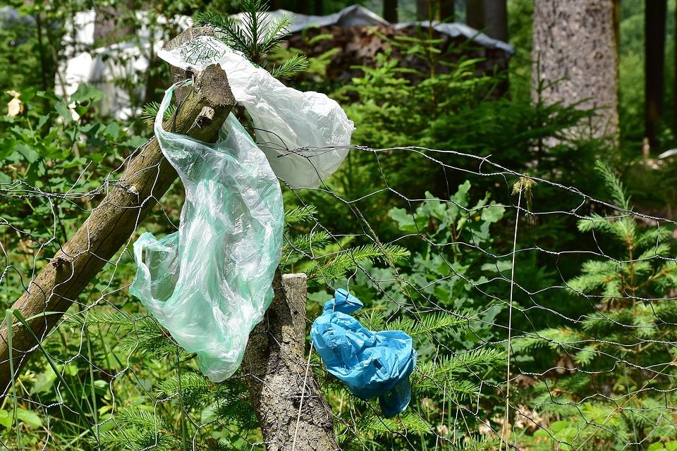 Plasty kam se podíváš. Můžeme zastavit dobu plastovou?