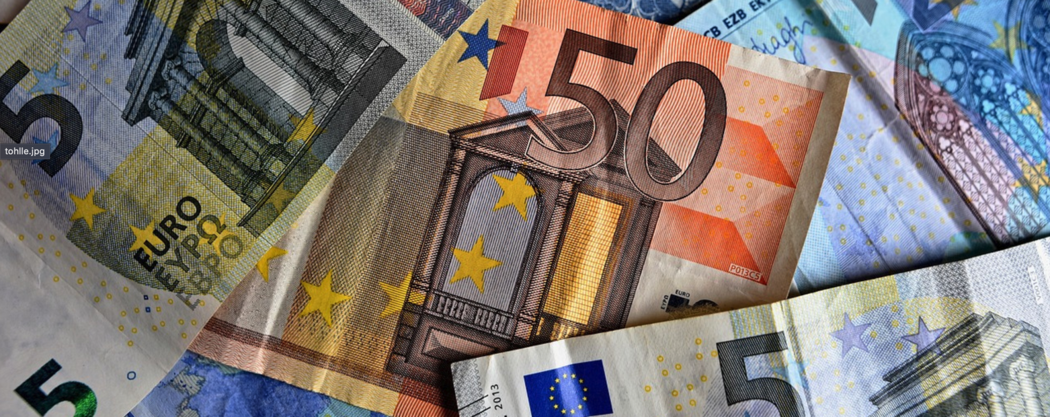 The Future Path of Euro