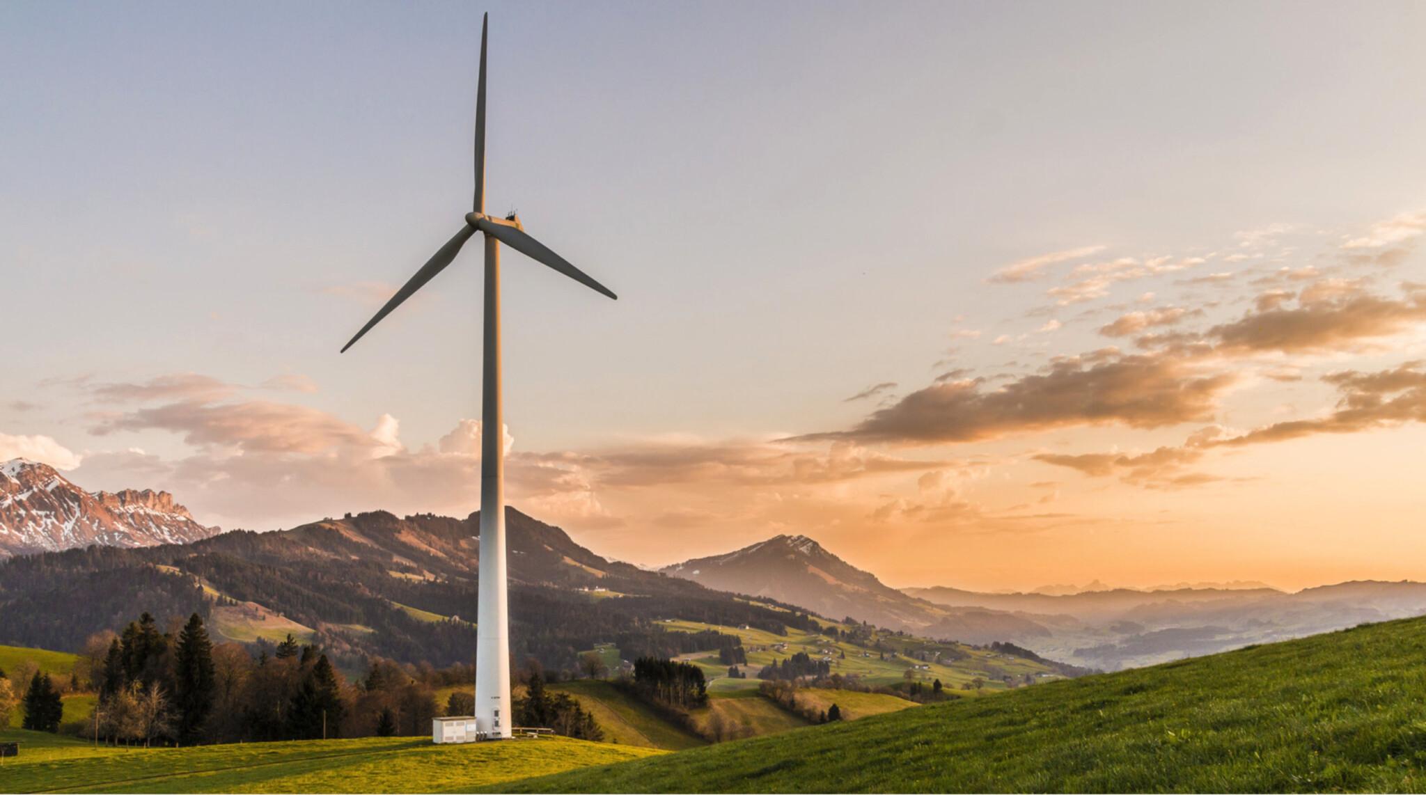 New Green Deal vs COVID-19. Zvládne EU financovat svou ambiciózní zelenou politiku?